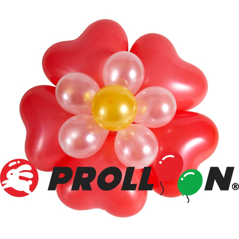 FL38 Flower DIY balloon set